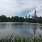 View by a pond in Central Park West.