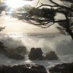 Wild Pacific Trail - Storm Watching Waves (Trail is #1 on Trip Advisor for Vancouver Island!)