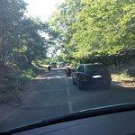 Photo of Peaugres Safari Parc