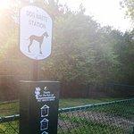 New Dog Park!