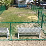 New Dog Park