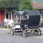 Horse drawn carriage available from Park Plaza