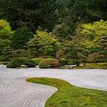 Photo from Portland Japanese Garden - April 2017