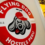 Flying Dog Backpackers Hostel Photo