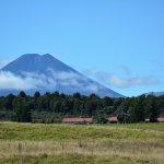 Farm near Tongariro National Park