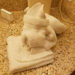 Bathroom Bunny