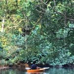 Bild från River View