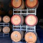 Barrels full of wine