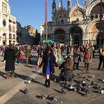 Pigeons at San Marco