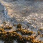 Natura Park Beach - EcoResort & Spa