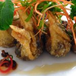 Spicy Sticky Beef Wontons