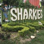 Photo de Sharkies Seafood Restaurant