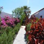 Foto de La Palma Jardin