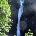 Horsetail Falls - Columbia River Gorge