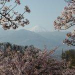 Photo of Yamanashi Fuehukigawa Fruit Park
