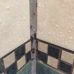 "More photos of our disgusting room, mouldy broken shower cubicle &""seaview"" staff still rude-unw"