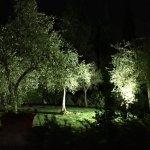 Photo of Villa Barberino