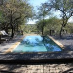 Toro Yaka Bush Lodge Photo