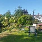 Bilde fra England's Rose