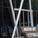Photo of Marina Bay City Gallery