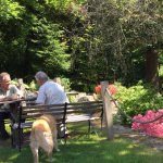 Outside seating in cared for garden