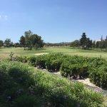 Photo of Royal Malta Golf Club