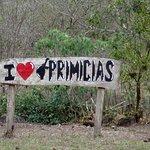 I <3 Primicias!
