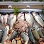 Fresh and daily sea foods!