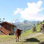 Photo de Farm stay holiday La Pera Doussa