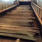 The preserved timber of the Corlea trackway