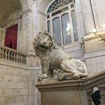 Amusing lion