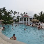 Main pool and pool bar