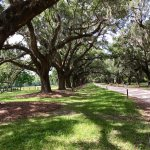 Foto di Boone Hall Plantation