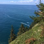 """Cape Lookout """"Cape"""" Trail views"""