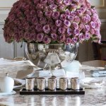 The fabulous lilac rose display