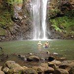Beautiful waterfall and pool area.