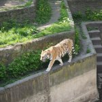 Photo de Lodz Zoo