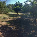 Biyamiti Bushveld Camp Foto