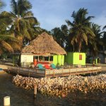 Photo of Tobacco Caye Lodge