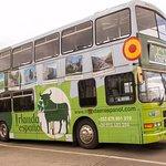 Autobús Irlanda en Español