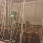 Large bug nets incorporate both beds and an oscillating fan