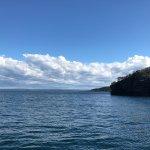 Foto de Jervis Bay Wild Cruises