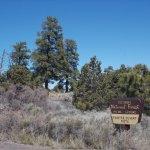 Coconino National Forest, Flagstaff AZ.