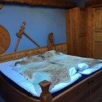 Viking room