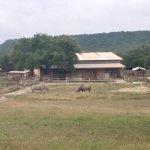 Photo de Fossil Rim Wildlife Center