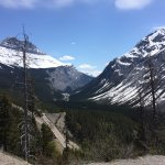 Icefields Parkway Foto