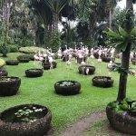 Foto di Nong Nooch Tropical Botanical Garden