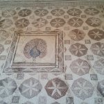 Amazing ancient mosaics in a huge site