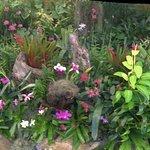 Photo de Durban Botanic Gardens