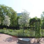 Photo of Horticultural Gardens (Tradgardsforeningen)